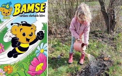 Bamse bjuder Sveriges bin på blomstermiddag