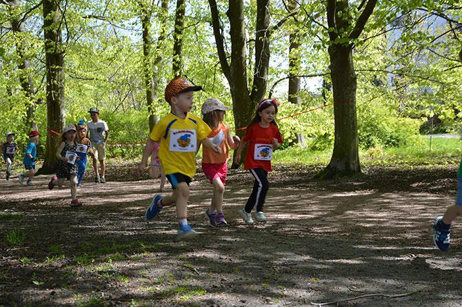 Dags för Bamseloppet 2019!